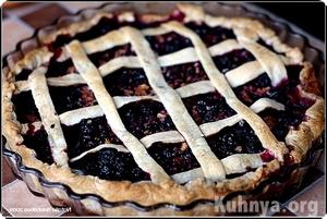 Творожный пирог с черноплодной рябиной: рецепт с пошаговыми фото